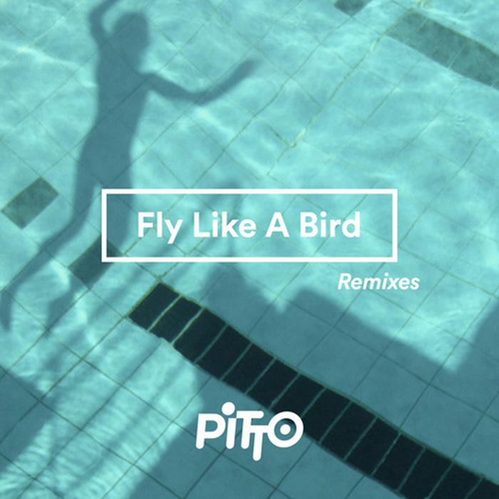 Pitto - Fly like a Bird ( Till von Sein & Tigerskin Remix ) cover