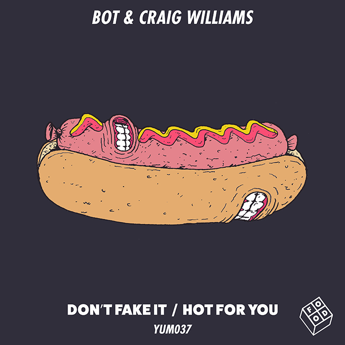 BOT & Craig Williams - Don't Fake It / Hot For You cover