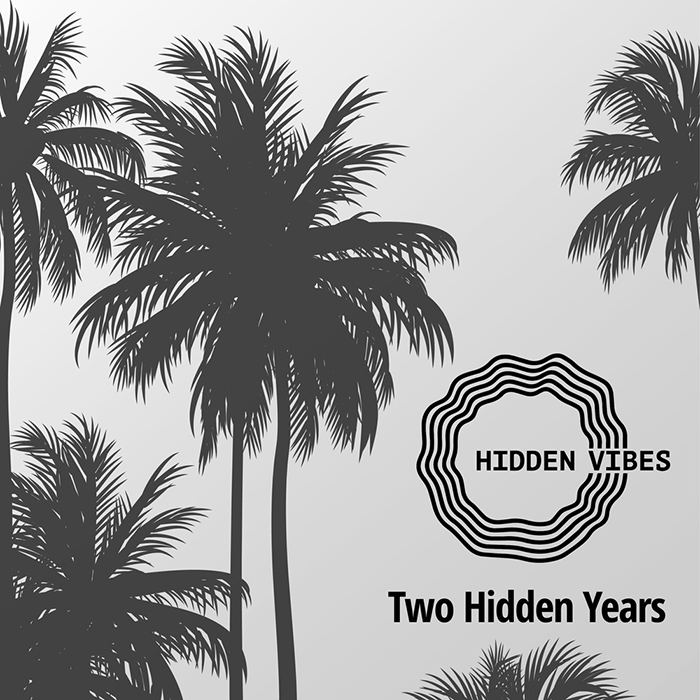 Various Artists - Two Hidden Years cover