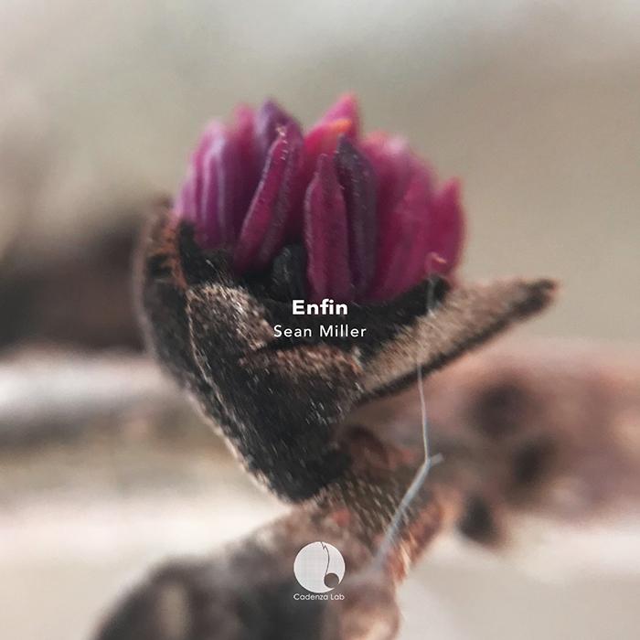 Sean Miller - Enfin EP cover