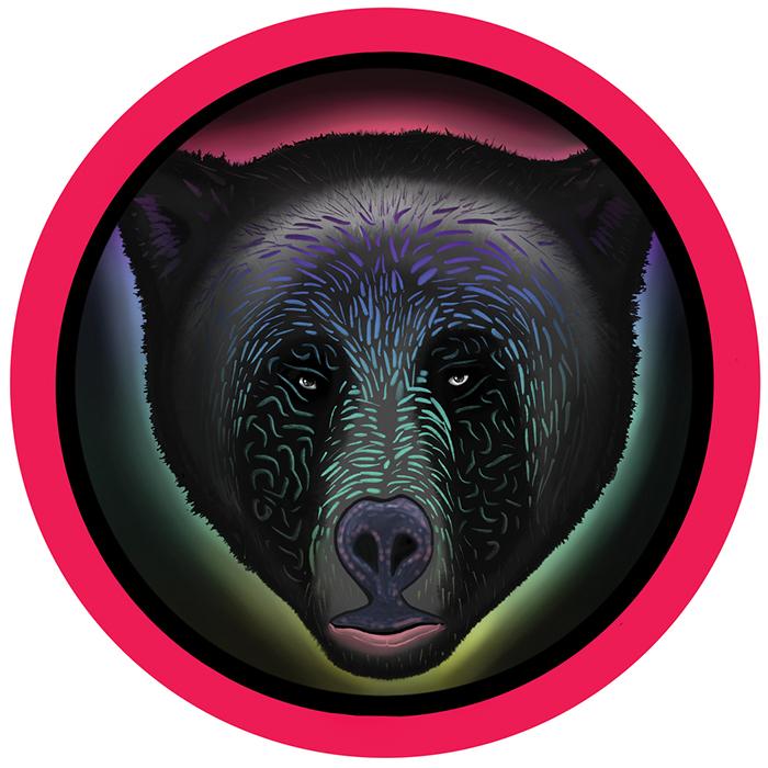 Raumakustik - Animal / Waves (Jamie Jones Remix) cover