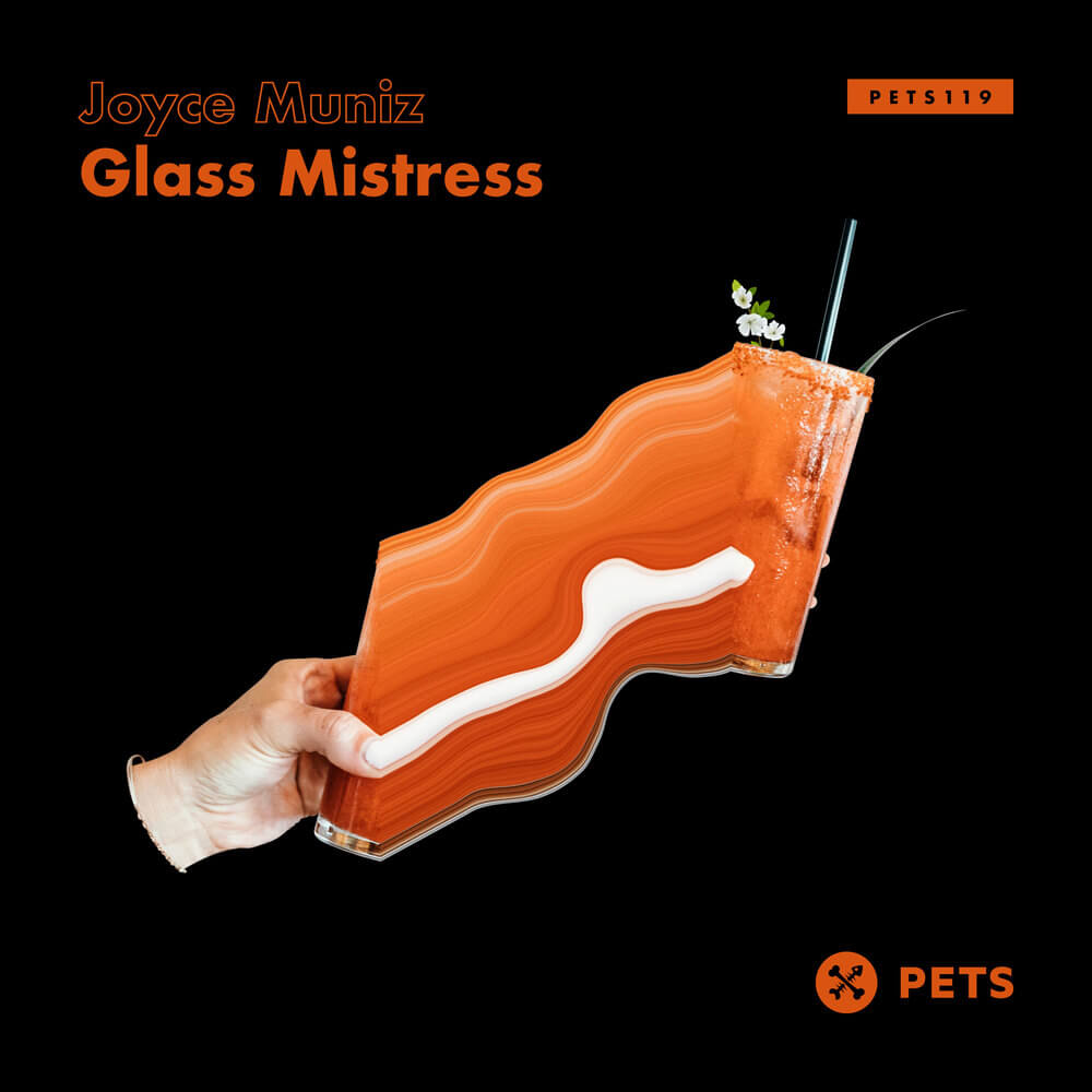 Joyce Muniz - Glass Mistress cover