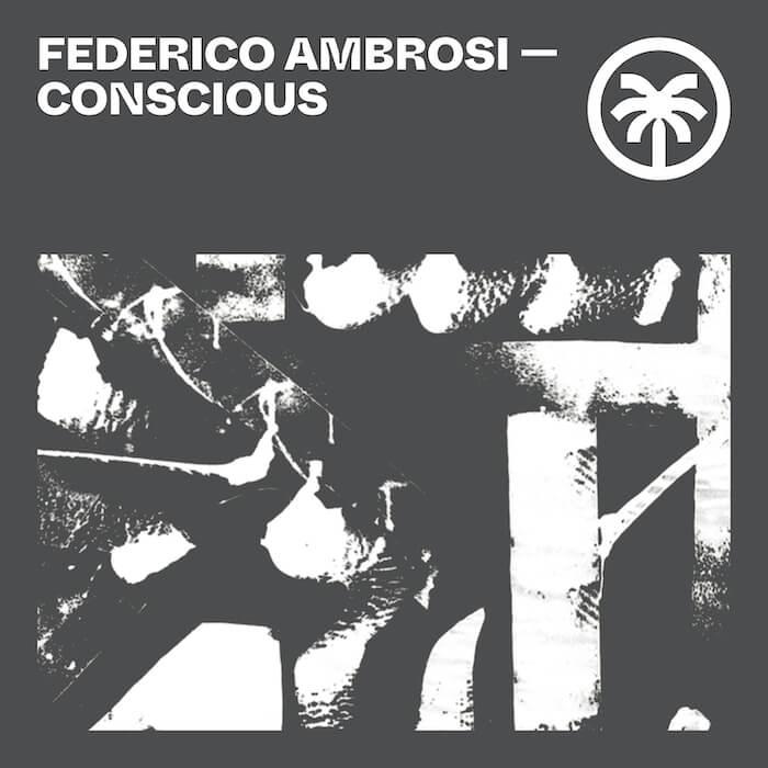 Federico Ambrosi - Conscious cover