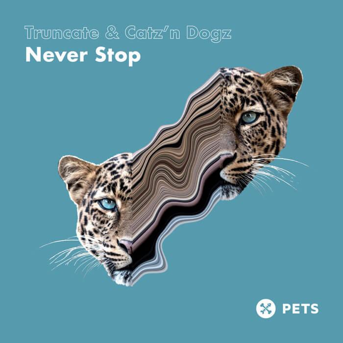 Truncate & Catz 'n Dogz - Never Stop cover