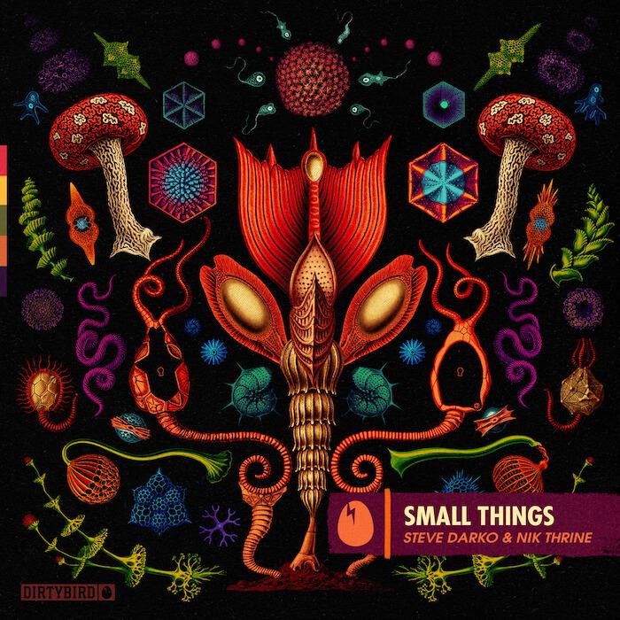 Steve Darko & Nik Thrine - Small Things cover